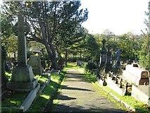 SE1226 : Graveyard by Alex McGregor