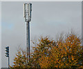 J3674 : Telecoms mast, Belfast by Albert Bridge