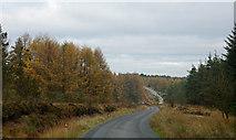 SE7995 : Road through Cropton Forest by Trevor Littlewood
