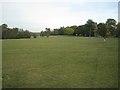 SP1391 : South corner of Pype Hayes Park by Robin Stott