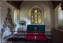 SU8518 : St Mary's Church Bepton by Tim Gummer