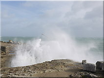 SY6768 : Storm St Jude Portland Bill by sue hogben