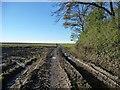SE4434 : Farm track junction, south-west corner, Weet Wood by Christine Johnstone