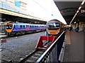 SJ8185 : Manchester Airport Railway Station by David Dixon
