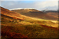 NN2985 : Glen Roy road winds through autumnal colours by Andy Waddington
