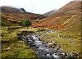 NN2988 : Allt a'Bhreac Achaidh by Andy Waddington