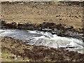 NO0088 : River Dee by Richard Webb