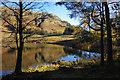 NY2904 : Blea Tarn by Ian Taylor