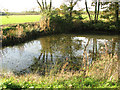 TM4394 : Small pond beside Waterheath Road by Evelyn Simak