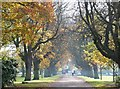 TA1230 : East Park, Holderness Road, Kingston upon Hull by Bernard Sharp