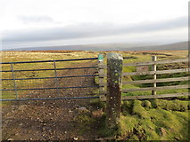 NY8235 : Former stone gatepost by Peter Wood