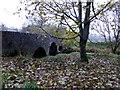 H4772 : Fallen leaves, Cranny by Kenneth  Allen