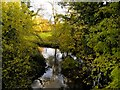 SJ7983 : River Bollin by David Dixon