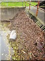 ST5769 : Trash screen, The Malago by Derek Harper