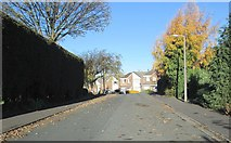 SE1421 : Long Ridge - Lyndhurst Avenue by Betty Longbottom