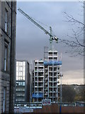 NT2572 : Skeletal building by M J Richardson