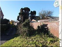 SD3642 : Bridleway, Hambleton by Barbara Carr
