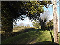 TM2461 : Mill Lane byway to High Road by Adrian Cable