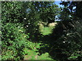 TG2538 : On Paston Way - Enclosed path at Hungry Hill near Overstrand by Colin Park