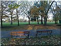 TQ3684 : Benches amid autumn leaves in Victoria Park by David Martin