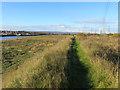 SJ3070 : Footpath along the River Dee bank by John S Turner