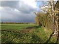 TM2459 : Footpath to Old Maids' Lane by Adrian Cable