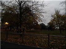 TQ2775 : Clapham Common by The Avenue by David Howard