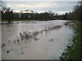 SP2964 : Bank of the River Avon overtopped, St Nicholas Park by Robin Stott
