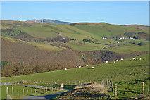 SN7078 : Fields above the Rheidol valley by Nigel Brown