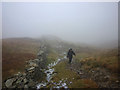 NY3909 : Ruinous wall on Red Screes by Karl and Ali