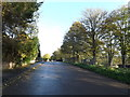 TG2306 : Martineau Lane, Lakenham by Adrian Cable