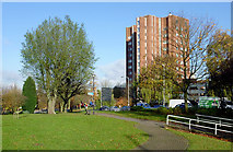 SO9098 : Park by Ring Road St Andrew's,  Wolverhampton by Roger  Kidd