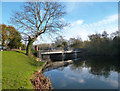 SU7575 : The Other Bridge, Sonning by Des Blenkinsopp