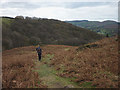 SD3089 : Footpath above Caws Beck by Karl and Ali