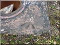 SJ6908 : OS rivet at Malinslee by Richard Law