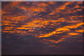 SD5300 : November bows out with an incredible sky by Ian Greig