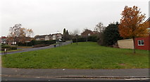 ST3091 : Green on the corner of Rowan Way and Japonica Close, Malpas, Newport by Jaggery