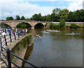 SO7875 : Rowing on the River Severn in Bewdley by Mat Fascione