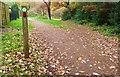 TQ4065 : Two Paths, West Wickham Common by Des Blenkinsopp