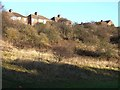 NZ3067 : Houses above Wallsend Dene by Oliver Dixon