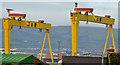 "J3575 : ""Samson"" and ""Goliath"", Belfast (7) by Albert Bridge"