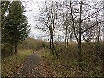 NO1134 : Scottish Midland Junction Railway by Richard Webb