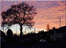 SO9096 : Sunset over Penn, Wolverhampton by Roger  Kidd