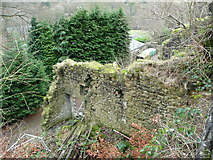 SE0023 : Ruins of Church Bank Mill, Cragg Vale by Humphrey Bolton