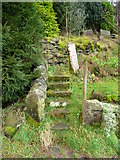 SE0023 : Steps on Hebden Royd FP114 at New Lane by Humphrey Bolton