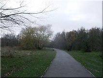 TQ2282 : Path in Little Wormwood Scrubs by David Anstiss