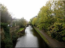 SD4861 : Looking south along Lancaster Canal from Nelson Street by Graham Robson
