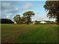 SP0774 : Western edge of St Mary's Park, Wythall by Robin Stott
