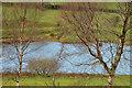 J4077 : Donaldson's Lake, Holywood (2) by Albert Bridge