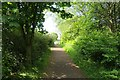 NZ2862 : Cycle/foot path, south of the Tyne by Richard Webb